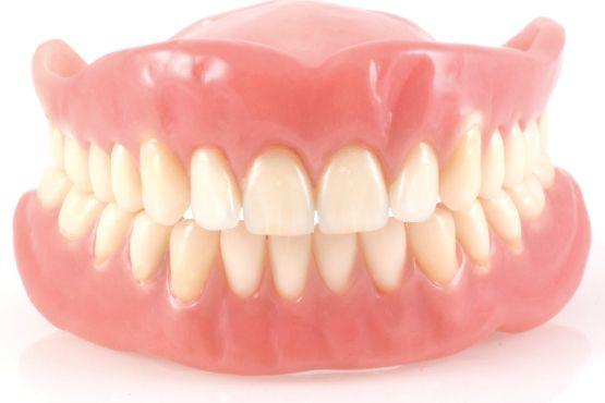 odontostixia